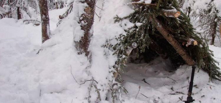 en la nieve cmo salir airoso del infierno blanco