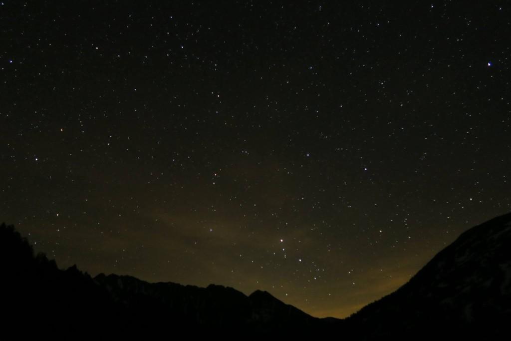 supervivencia_lata_sardinas_noche_naturaleza