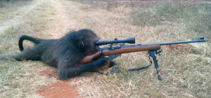 mono_disparando
